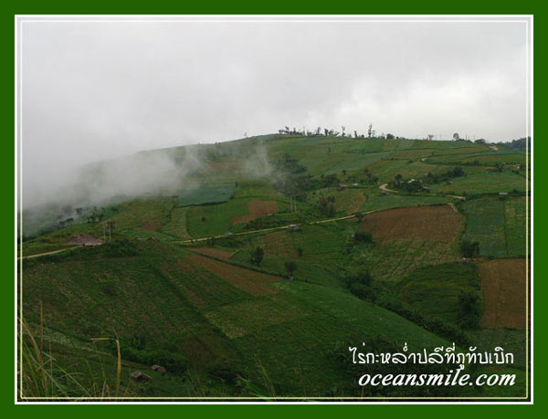 phetchabun muslim An online trip planning tool that estimates the cost needed to complete your vacation trip.